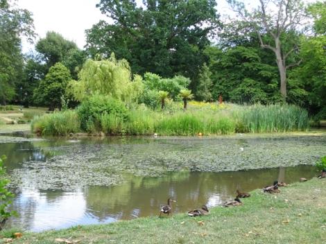 Herschel Park - Slough, Berkshire