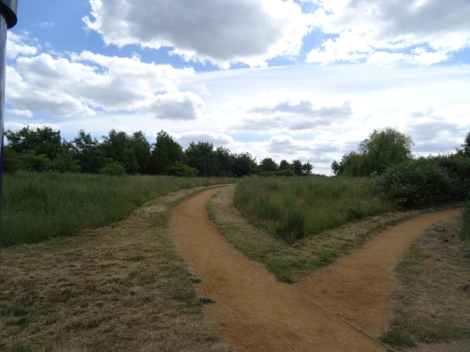 Herschel Park Nature Reserve, Slough, Berkshire