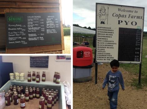Copas Farm - Iver : Slough it's not so bad