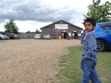 Copas Farm Iver : Slough it's not so bad