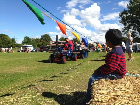 Slough Canal Festival 2015-6