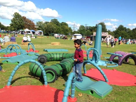 Slough Canal Festival 2015-7