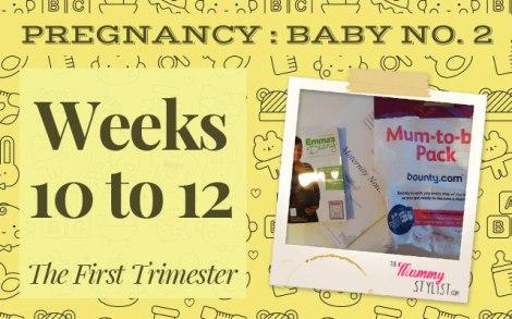Pregnancy---First-Trimester---Week-10-11-12