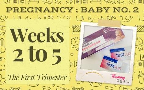 Pregnancy---First-Trimester---Week-2-3-4-5