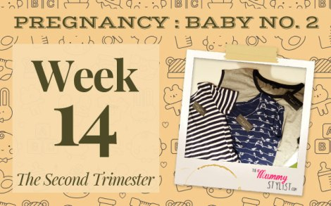 Pregnancy-Second-Trimester-Week-14