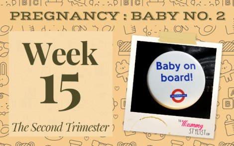 Pregnancy-Second-Trimester-Week-15