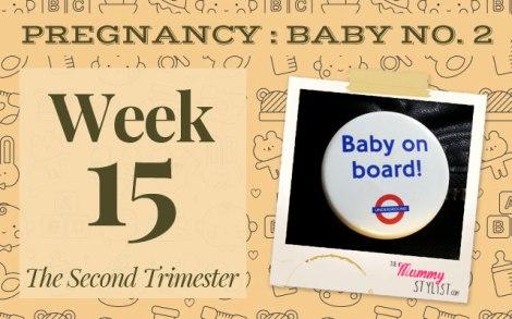Pregnancy-Second-Trimester-Week-15