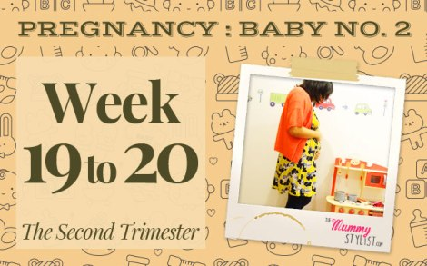 Pregnancy-Second-Trimester-Week-19-20