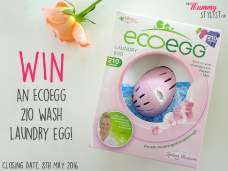 Win-Ecoegg-laundry-egg-may-giveaway