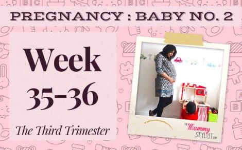 Pregnancy-Third-Trimester-Week-35-36