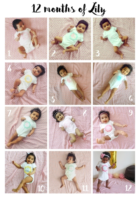 12 months of Lily
