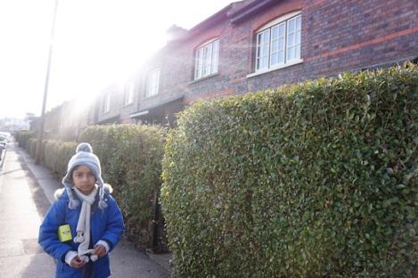 didcot-railway-houses