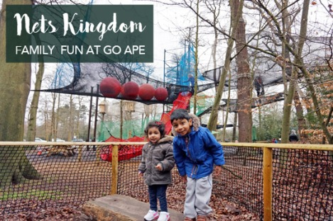 nets-kingdom-go-ape-black-park-slough-berkshire-family-1