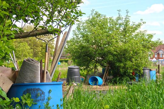 slough_allotments_gardening_outdoors_berkshire-4