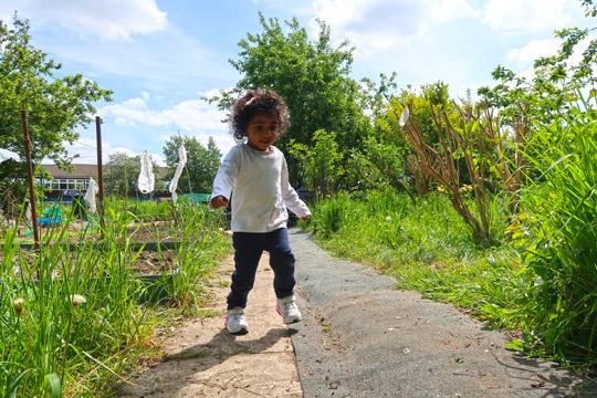 slough_allotments_gardening_outdoors_berkshire-5