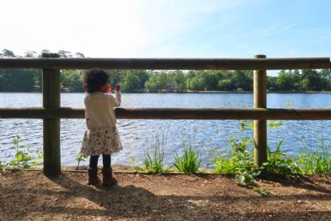 black_park_slough_berkshire_buckinghamshire_toddler-4