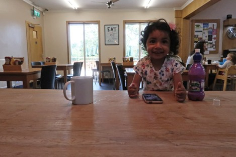 black_park_slough_berkshire_buckinghamshire_toddler-cafe