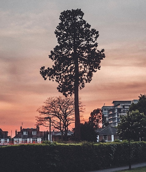 Lascelles Park, Slough, Berkshire
