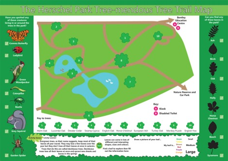 herschel-park-childrens-tree-trail-leaflet-slough-berkshire