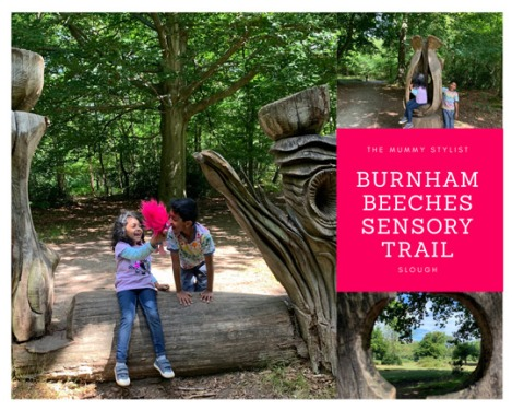 burnham-beeches-sensory-trail-slough