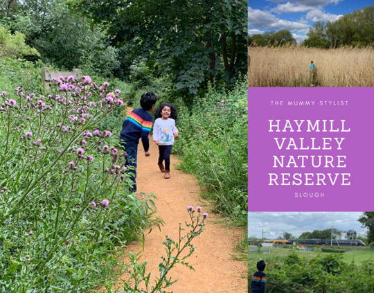 Haymill-Valley-Nature-Reserve-Slough-Berkshire