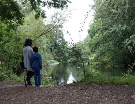 Denham Country Park Nature Trail