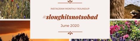 June-2020-Instagram-sloughitsnotsobad