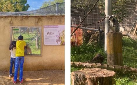 Hanwell Zoo, West London