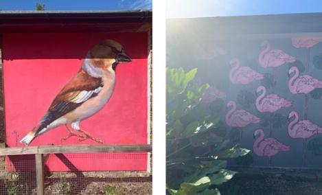 Hanwell Zoo Murals